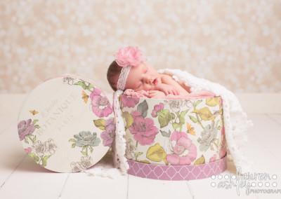 vivien newborn-31